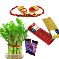 Lucky Bamboo with Rakhi