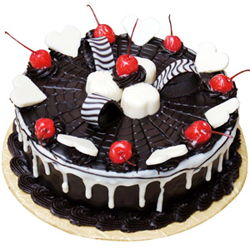 Chocolate Web Cake to Vizag
