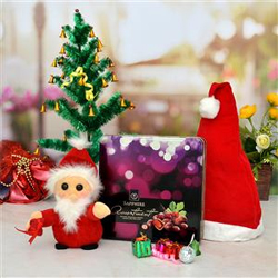 Assorment with Santa toy