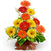 Ugadi Specials Wedding Gifts Mothers Day Flowers Cakes