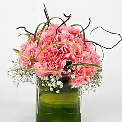 15 Pink Carnations Vase