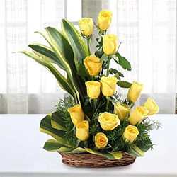 Yellow Roses signify friendship & are perfect for expressing friendly feelings towards someone