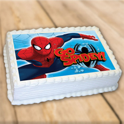 Spiderman photo cake