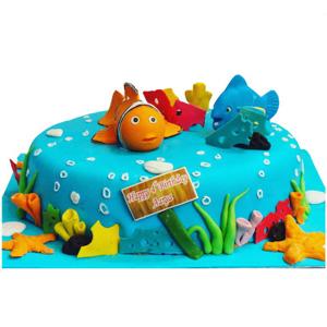 Nemo Cake.2kg