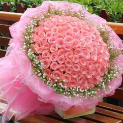 Bunch of 300 Pink Roses to kakinada