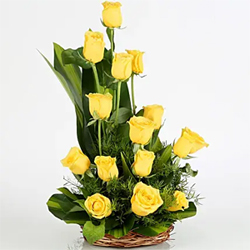 Sunshine Yellow Roses