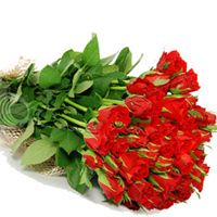 24 red roses to Rajahmundry