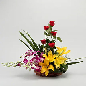 Colourful Blooms Basket