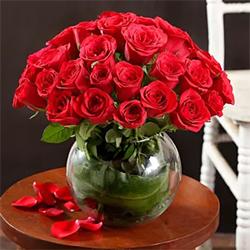 40 Red Roses Arrangement