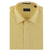 Van Heusen Formal Striped Shirt