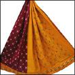 Pochampally Anamika Cotton Saree
