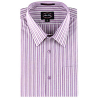 Allen Solly Striped Shirt