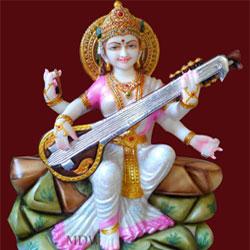 Goddess Maa Saraswati to Vizag