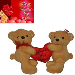 Couple teddy
