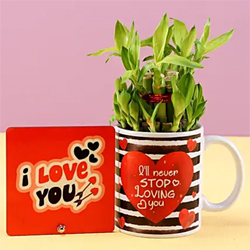 Lucky Bamboo Love Combo