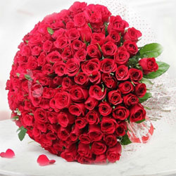 Gorgeous Roses to Rajahmundry