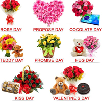 valentines Day Valentine Week