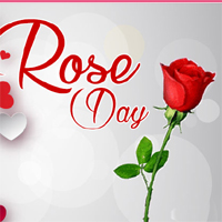 Rose Day Valentines day