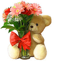 Flowers & Teddies to guntur