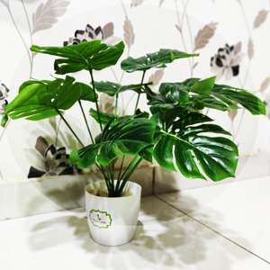 Artificial plants and home decorative plants